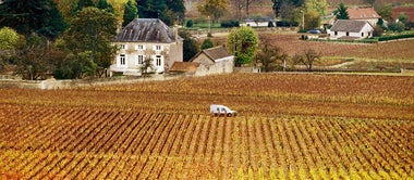 Driving Burgundy's Route des Grands Crus
