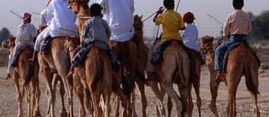 From camels to cricket: Dubai's world of sport