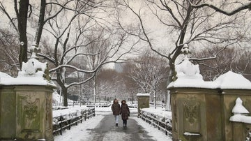 How to deal with New York's snow days