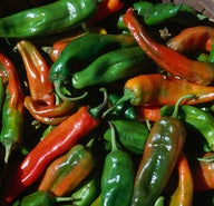 Some like it hot: green chile tour of New Mexico