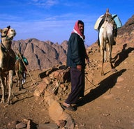 Egypt: Exploring the Sinai