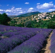 The ultimate Provence trip planner
