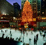 Best things to do in new york city this january lonely for Things to do in new york in winter