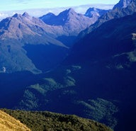 New Zealand's tracks less-travelled