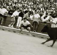 Raging bull: Festa do Boi in Allariz