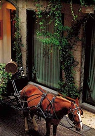Best places to stay in Verona