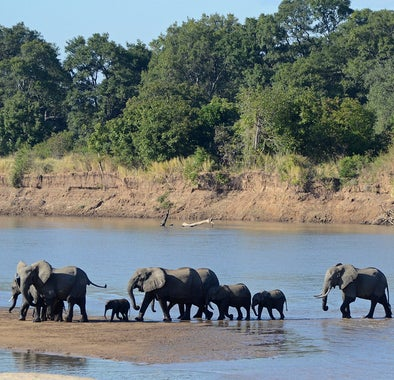 Top things to do in Zambia