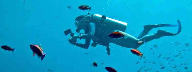 Diving Nusa Lembongan by lse Reijs and Jan-Noud Hutten
