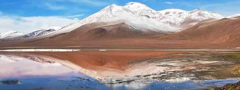 Laguna Colorada by Nico Kaiser