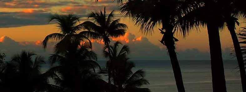 Sunset in Puerto Rico by Trish Hartmann