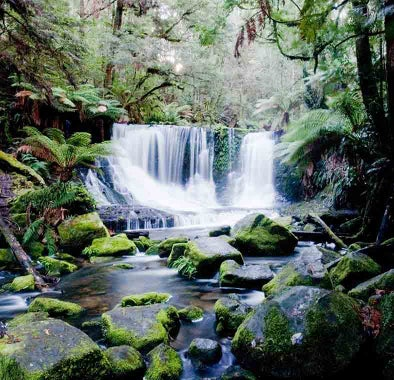 Top things to do in Tasmania