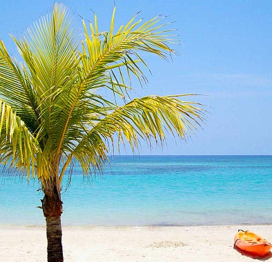 Top things to do in Roatán