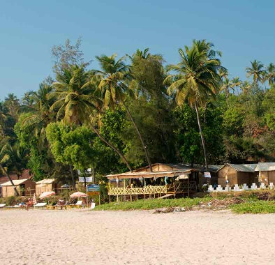 Top things to do in Palolem & South Goa