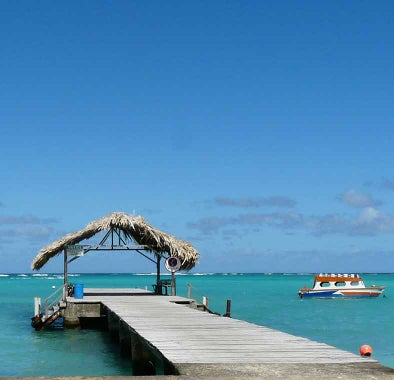 Top things to do in Trinidad & Tobago