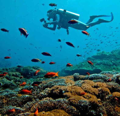 Top things to do in Nusa Lembongan