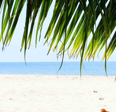 Top things to do in Sihanoukville