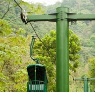A6cd782472dd934e49cc042e1ef35c39-rainforest-aerial-tram