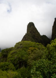ʻIao Valley & Central Maui