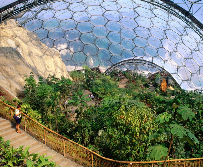 Exploring the Eden Project.
