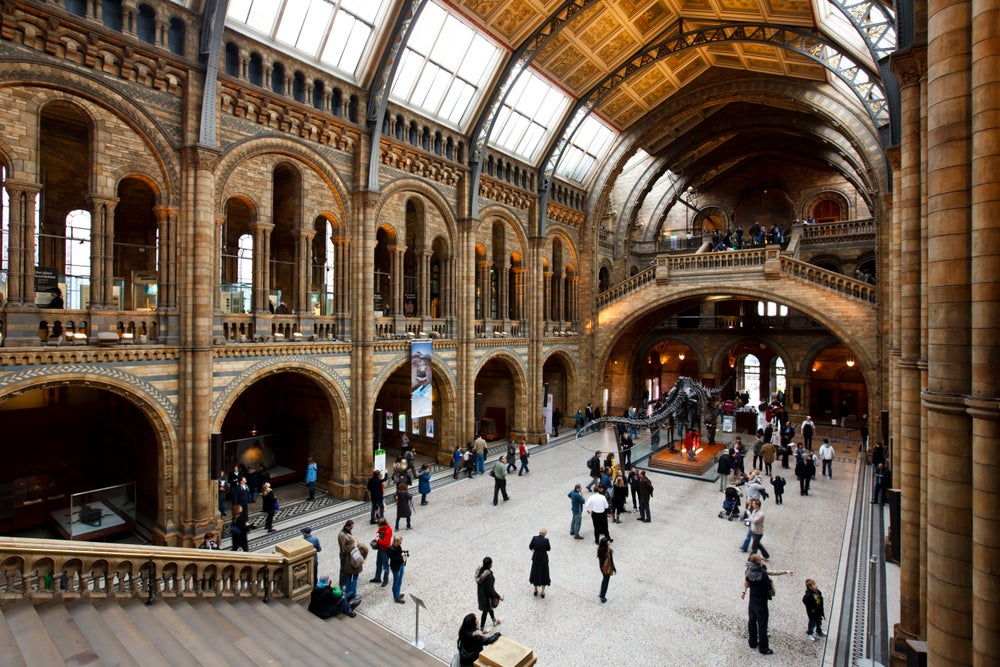 Interior of the Natural History Museum.