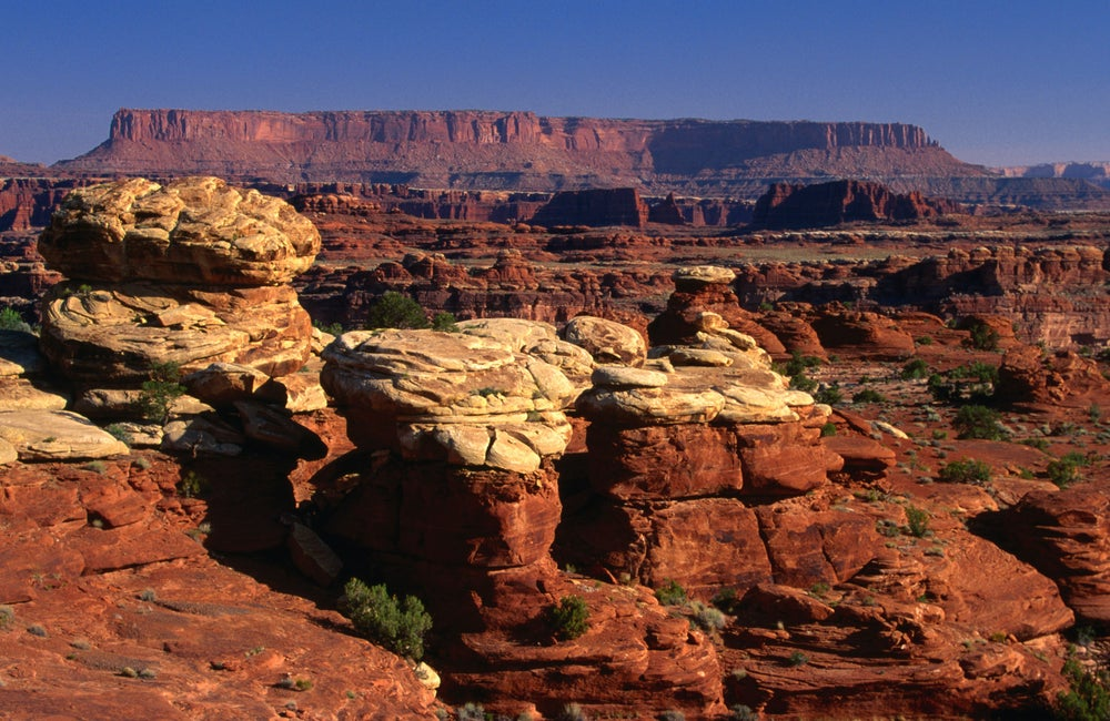 The Colorado Overlook road, Needles area, Canyonlands National Park.