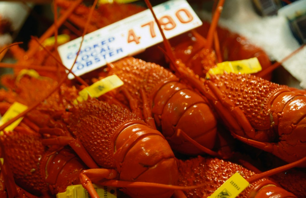 Fresh lobsters for sale at the Sydney Fish Market.