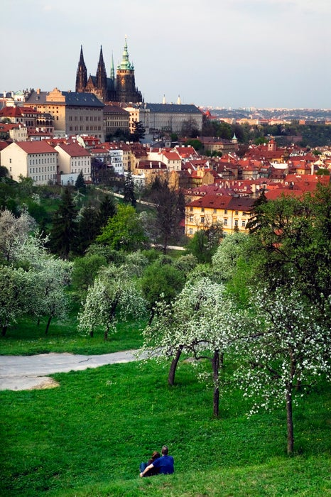 St Vitus Cathedral and castle area with couple cuddling in park in foreground.
