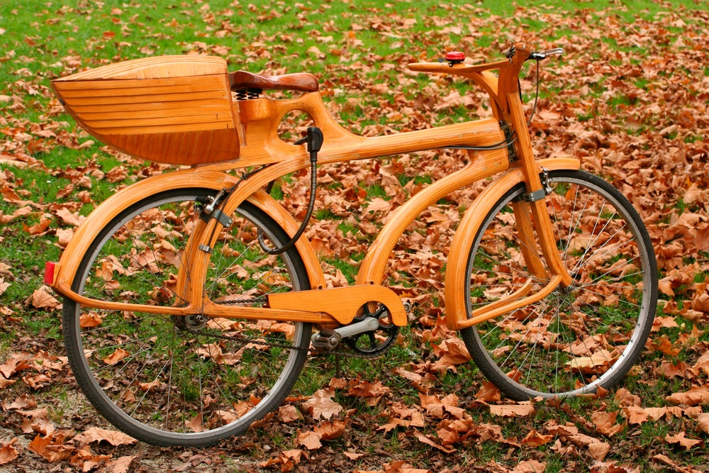 Wooden bike in park at National Museum.