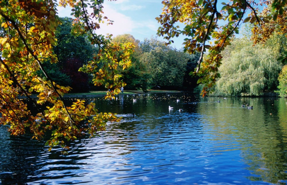 St Stephen's Green pond.