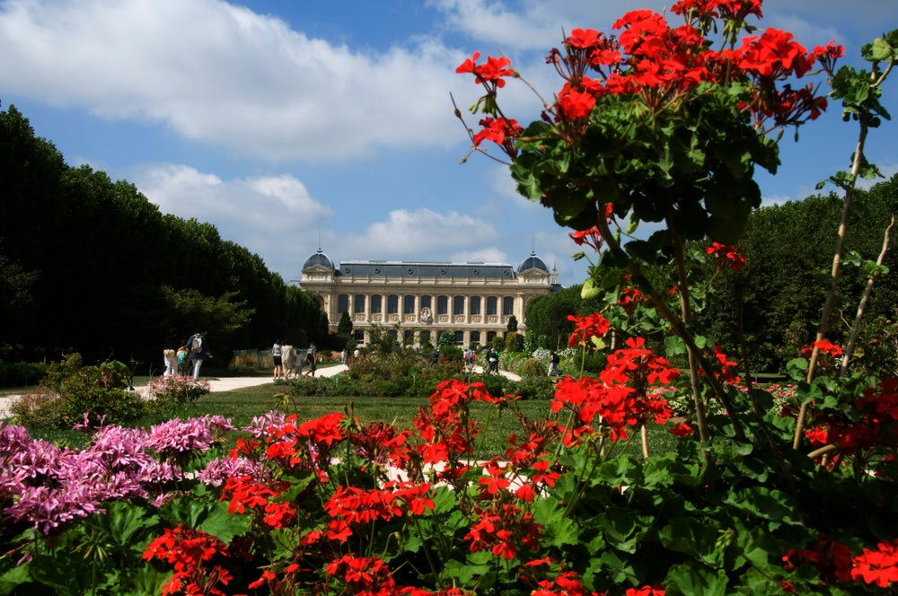 Jardin des Plantes, with building of Grande Galerie de l'Evolution in background.