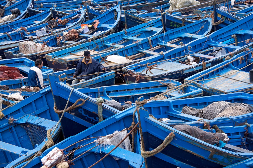 Blue fishing boats moored at harbour.