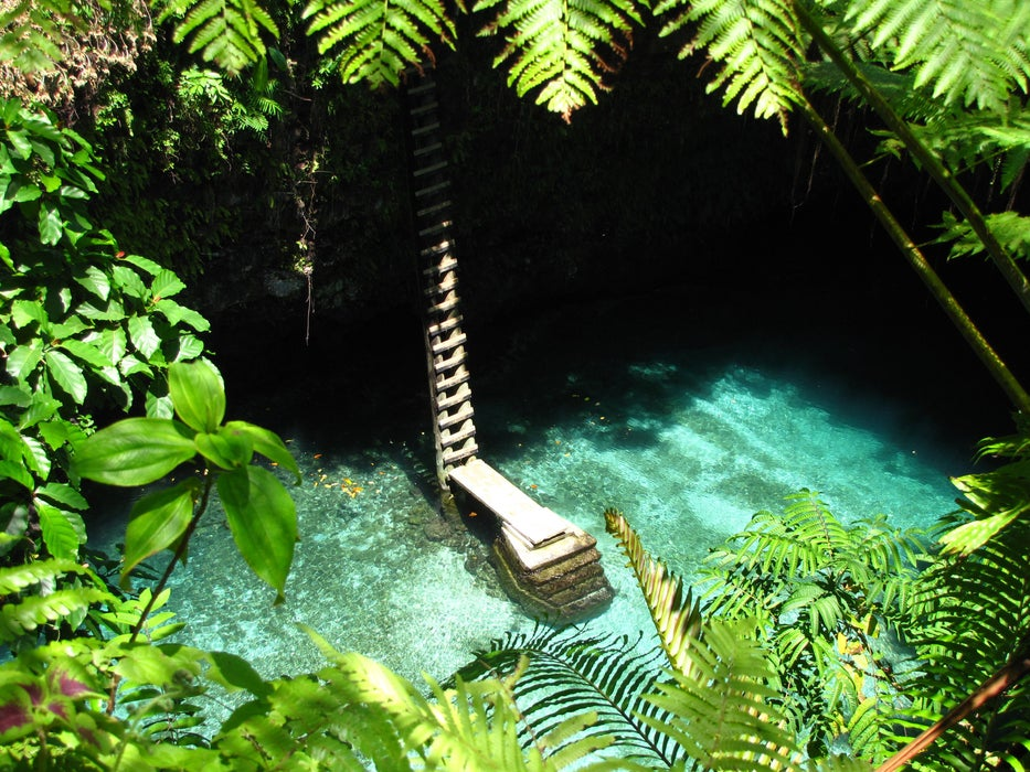 Ladder leading to To Sua trench waterhole in jungle.