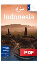 Indonesia - Plan your trip (Chapter)