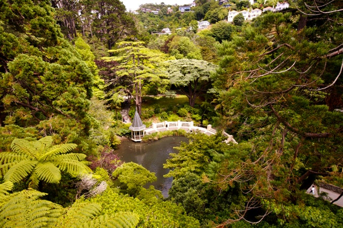 Wellington Botanic Gardens, Wellington, New Zealand