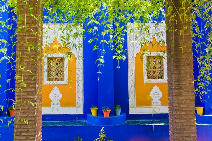 Jardin majorelle lonely planet for Jardin yves saint laurent