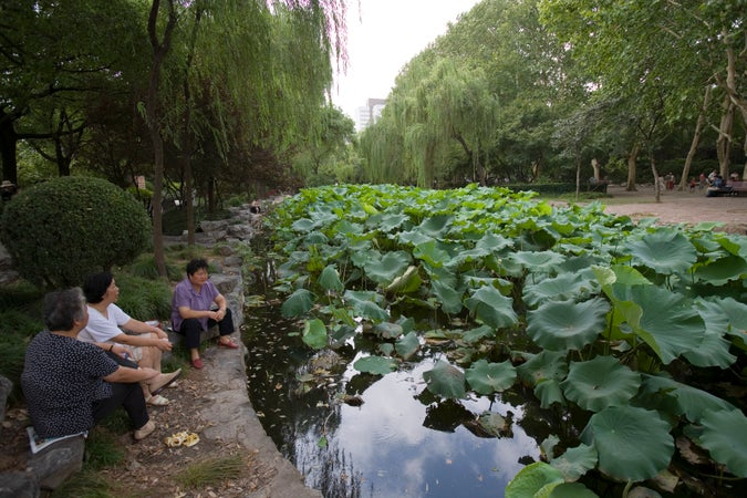 Relaxing beside Lotus pond, Lu Xun Park, Hongqiao, Shànghǎi, China