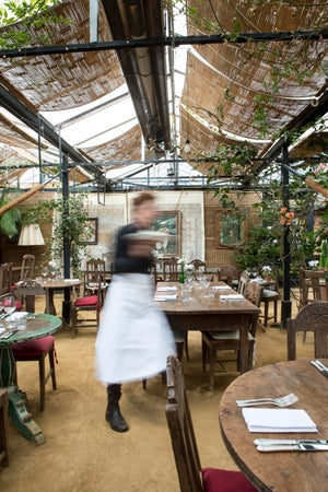 Waiter at Michelin-starred Petersham Nurseries Cafe, London, England
