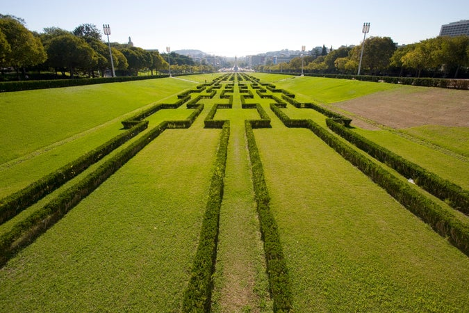 Patterned hedges, Parque Eduardo VII, Avenida, Lisbon, Portugal