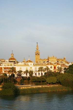 View over the Cathedral and the Maestranza, Seville, Andalucia, Spain, Seville, Spain