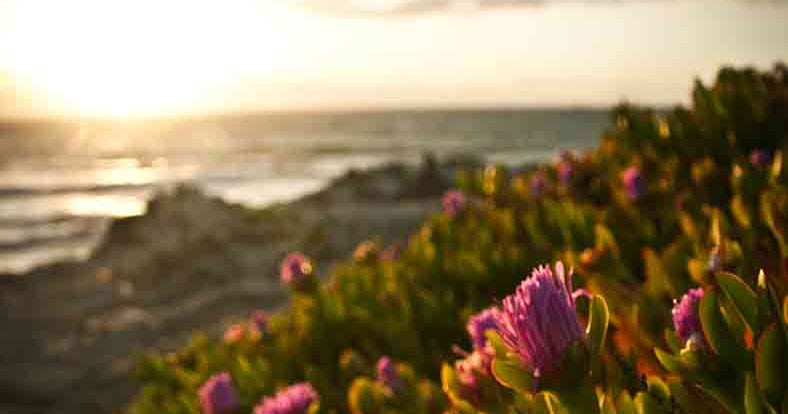 Portugal's best beaches and resorts - Lonely Planet