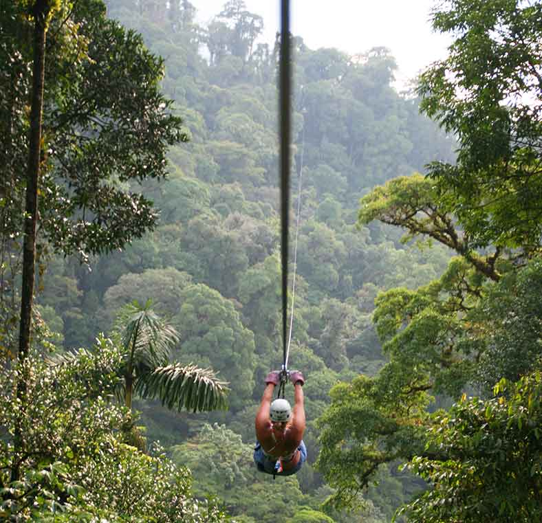Costa Ricau0027s best canopy tours and trams & Costa Ricau0027s best canopy tours and trams - Lonely Planet