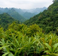how to get a vietnam visa online lonely planet