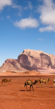 Travel places in Jordan  Lonely Planet