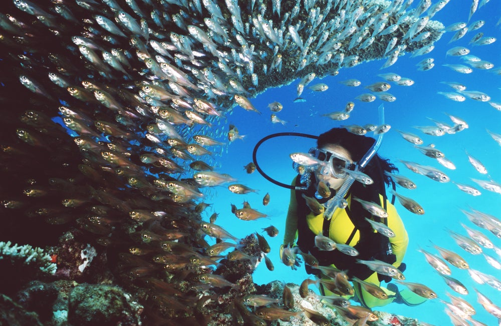 Scuba diving at the Great Barrier Reef.
