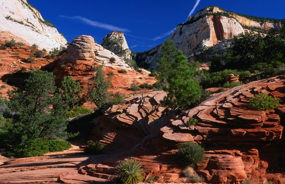 Rock formations in Zion National Park.